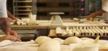 La boulangerie en CAP, BP et Metion Complémentaire