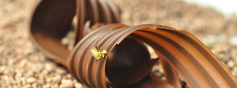 Samedis gourmands / Cours de Pâtisserie / Décor Chocolat