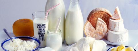 Les produits laitiers  éleveurs grande distribution leclerc